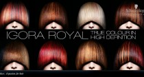 igora_royal